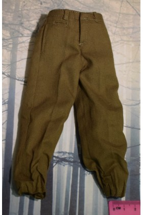 Dragon In Dreams DID 1/6 Scale WW II US Brown Trousers from Paul A80115