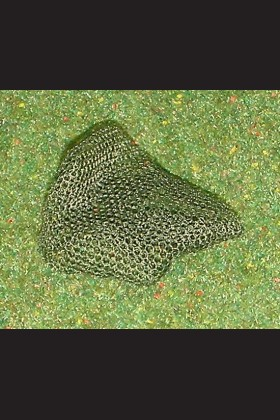 US PARATROOPER - CAMOUFLAGE NET