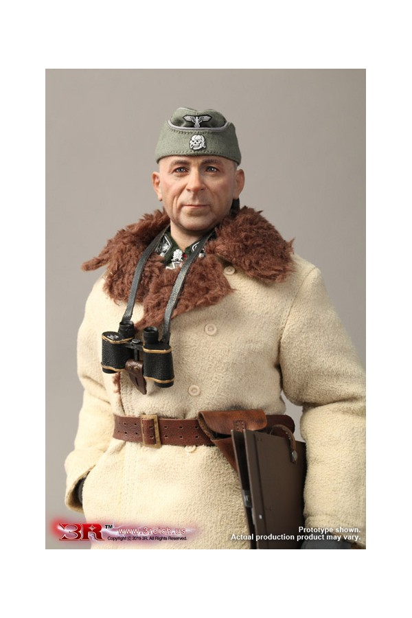 3-R - DRAGON IN DREAMS - DID - 1/6 SCALE - WW II - GERMAN - PAUL HAULER SS-OBERSTGRUPPENFUHRER - GM642
